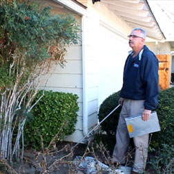 Free Termite Inspection in Newport Beach | Newport Beach Pest Inspection | Free Termite Inspection in Seal Beach